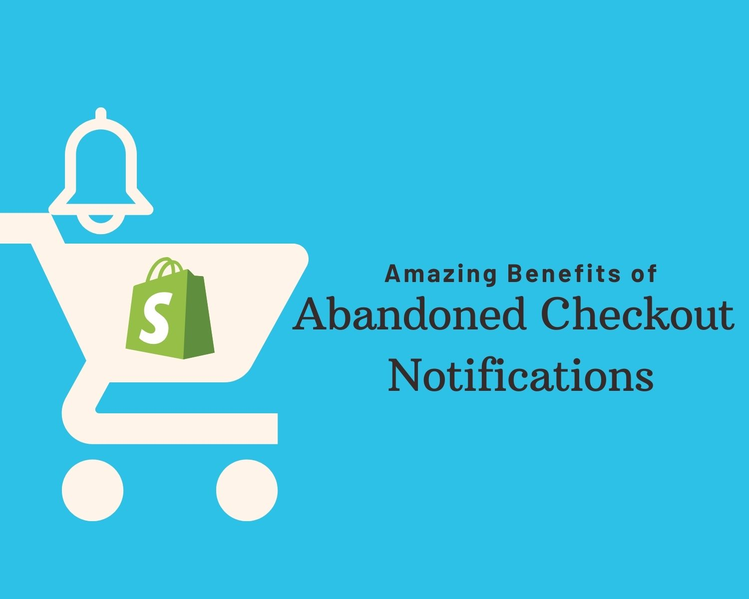 abandoned checkout notifications